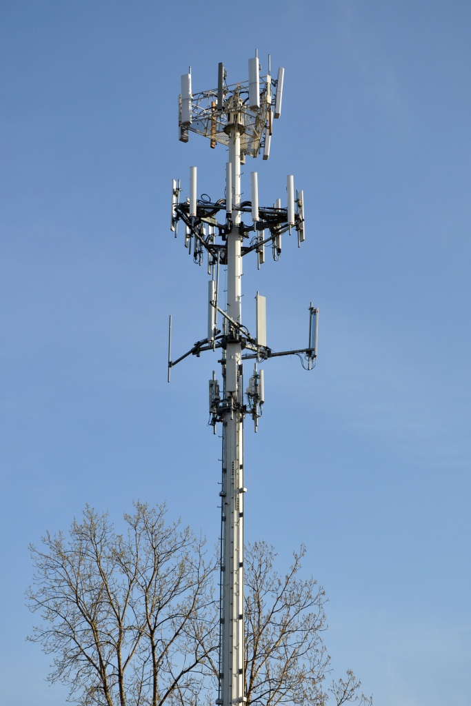 Harmful EMF RF coming from cell tower